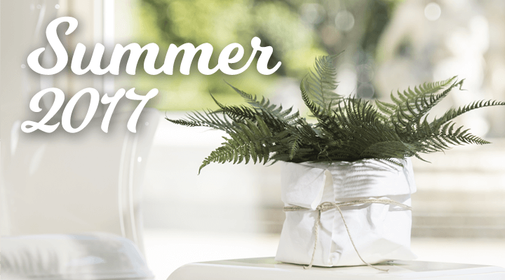 Promozioni Linfadecor Summer 2017