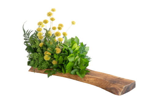 Composizione da tavolo Botanika